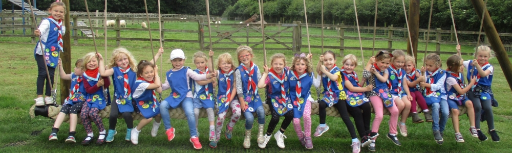 Girlguiding Norfolk
