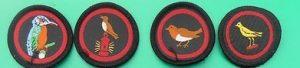 Badges of kingfisher, nightingale, robin and canary patrols