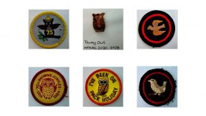 Picture of 6 bird related badges